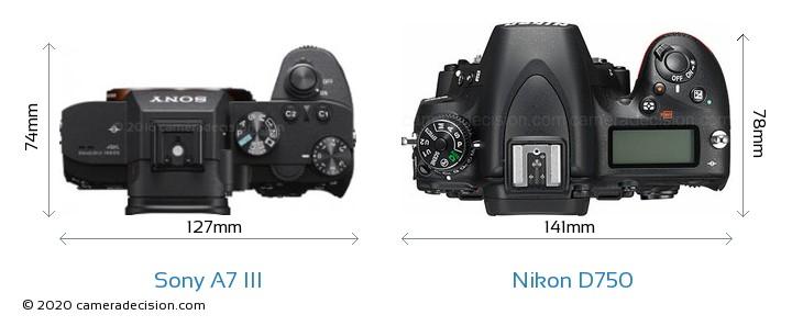Sony A7 III vs Nikon D750 Camera Size Comparison - Top View