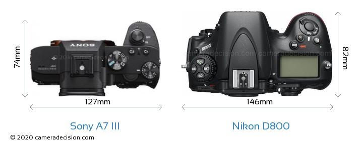 Sony A7 III vs Nikon D800 Camera Size Comparison - Top View