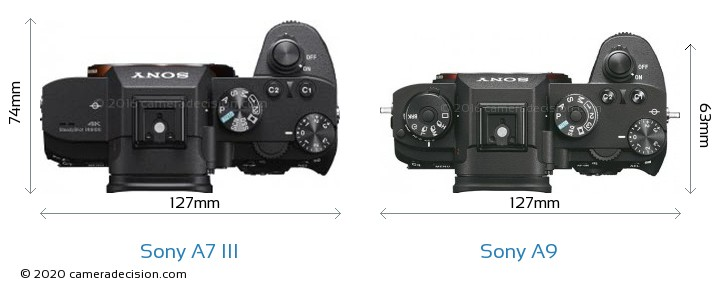 Sony A7 III vs Sony A9 Camera Size Comparison - Top View
