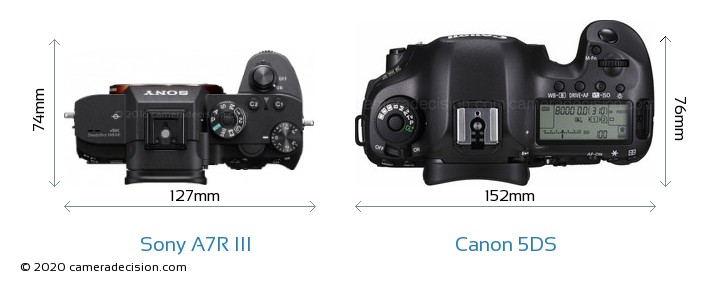 Sony A7R III vs Canon 5DS Camera Size Comparison - Top View