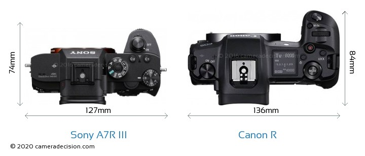Sony A7R III vs Canon R Camera Size Comparison - Top View