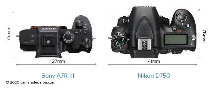 Sony A7R III vs Nikon D750 Camera Size Comparison - Top View