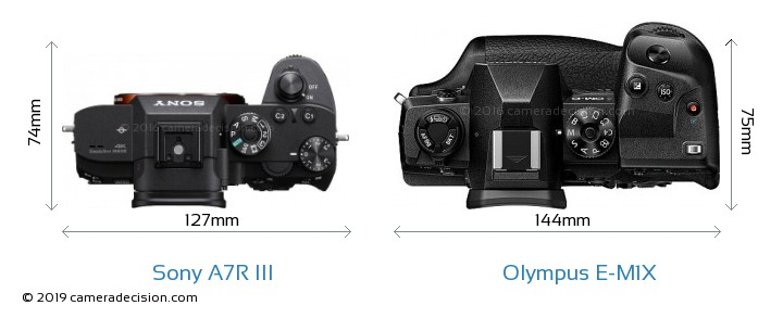 Sony A7R III vs Olympus E-M1X Camera Size Comparison - Top View