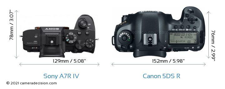 Sony A7R IV vs Canon 5DS R Camera Size Comparison - Top View