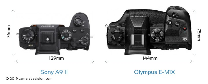 Sony A9 II vs Olympus E-M1X Camera Size Comparison - Top View