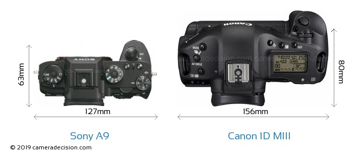 Sony A9 vs Canon 1D MIII Camera Size Comparison - Top View