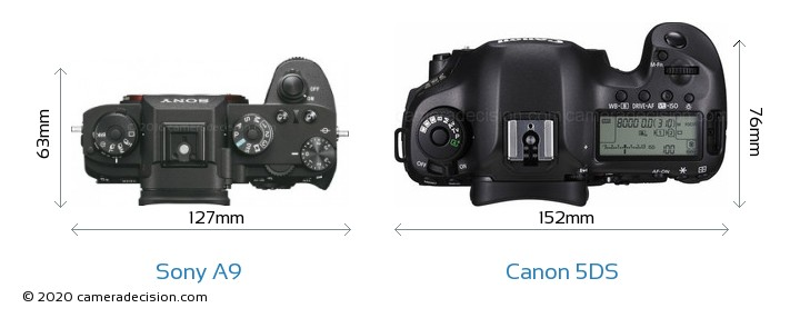 Sony A9 vs Canon 5DS Camera Size Comparison - Top View