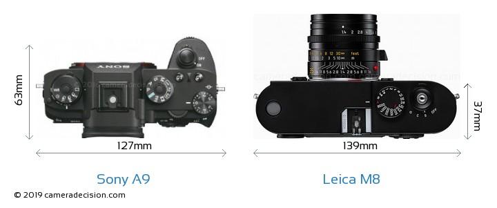 Sony A9 vs Leica M8 Camera Size Comparison - Top View