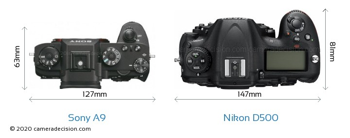 Sony A9 vs Nikon D500 Camera Size Comparison - Top View