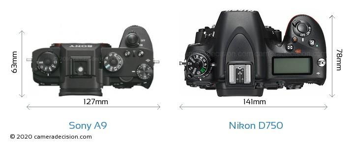 Sony A9 vs Nikon D750 Camera Size Comparison - Top View