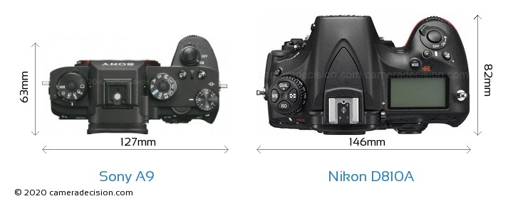 Sony A9 vs Nikon D810A Camera Size Comparison - Top View