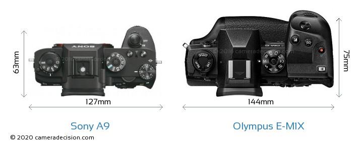 Sony A9 vs Olympus E-M1X Camera Size Comparison - Top View