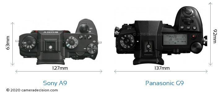 Sony A9 vs Panasonic G9 Camera Size Comparison - Top View