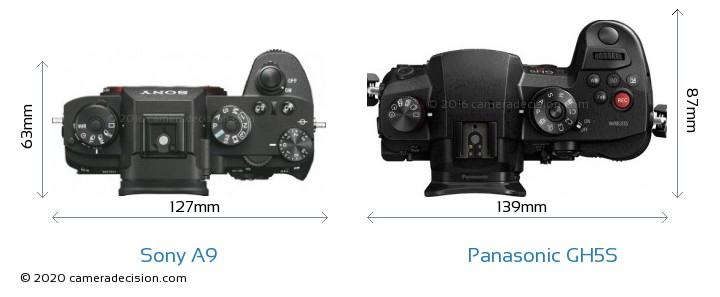 Sony A9 vs Panasonic GH5S Camera Size Comparison - Top View