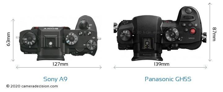Sony A9 vs Panasonic GH5S Camera Size Comparison - Top View