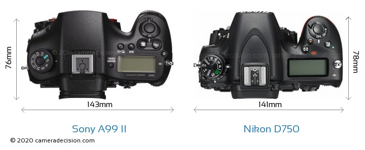 Sony A99 II vs Nikon D750 Camera Size Comparison - Top View