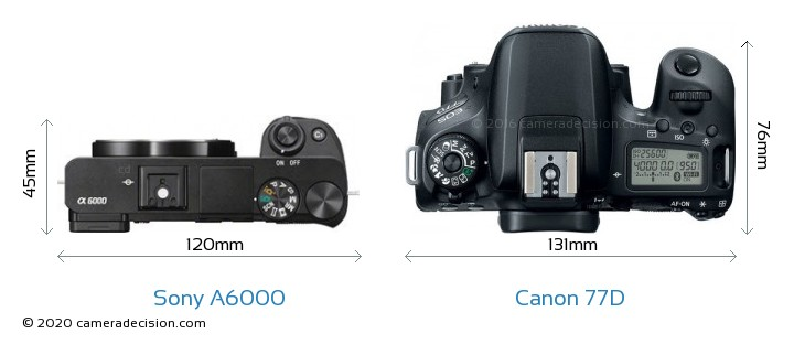 Sony A6000 vs Canon 77D Camera Size Comparison - Top View