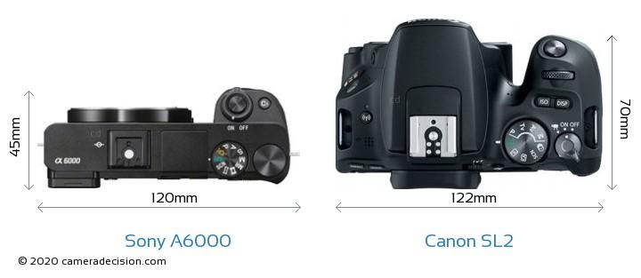 Sony A6000 vs Canon SL2 Camera Size Comparison - Top View