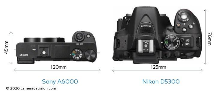Sony A6000 vs Nikon D5300 Camera Size Comparison - Top View