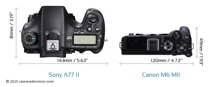 Sony A77 II vs Canon M6 MII Camera Size Comparison - Top View
