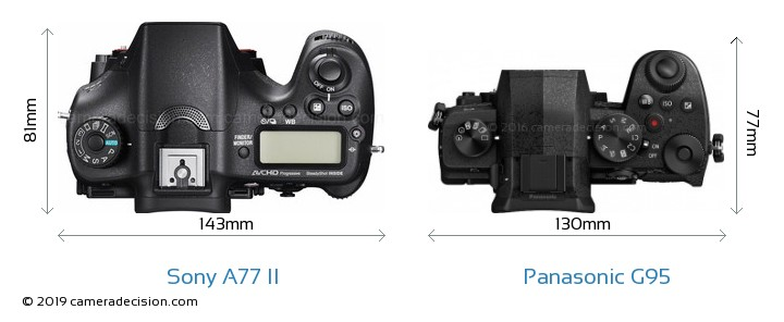 Sony A77 II vs Panasonic G95 Camera Size Comparison - Top View